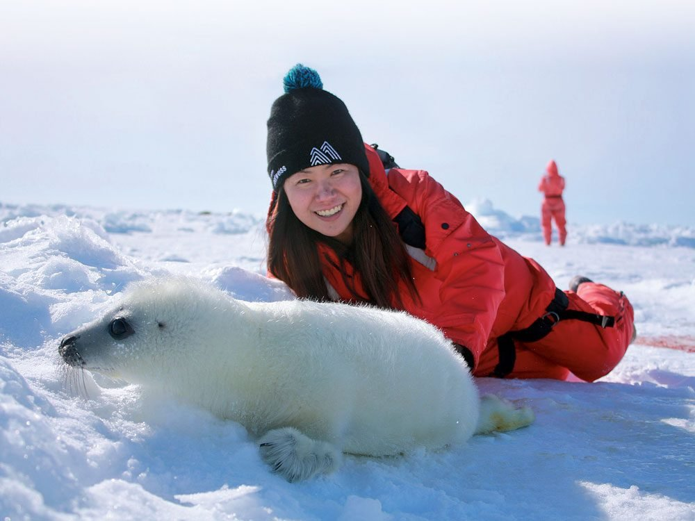 Kate with harp seal in the Magdalen Islands