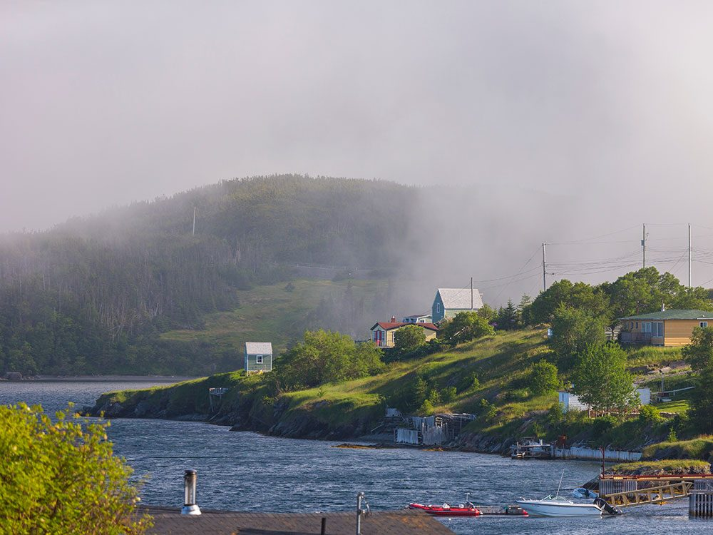 Newfoundland and Labrador foggy weather