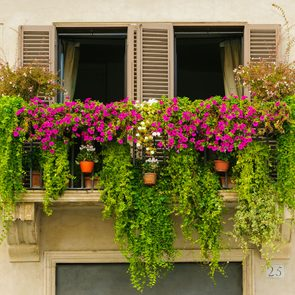 Urban gardening containers