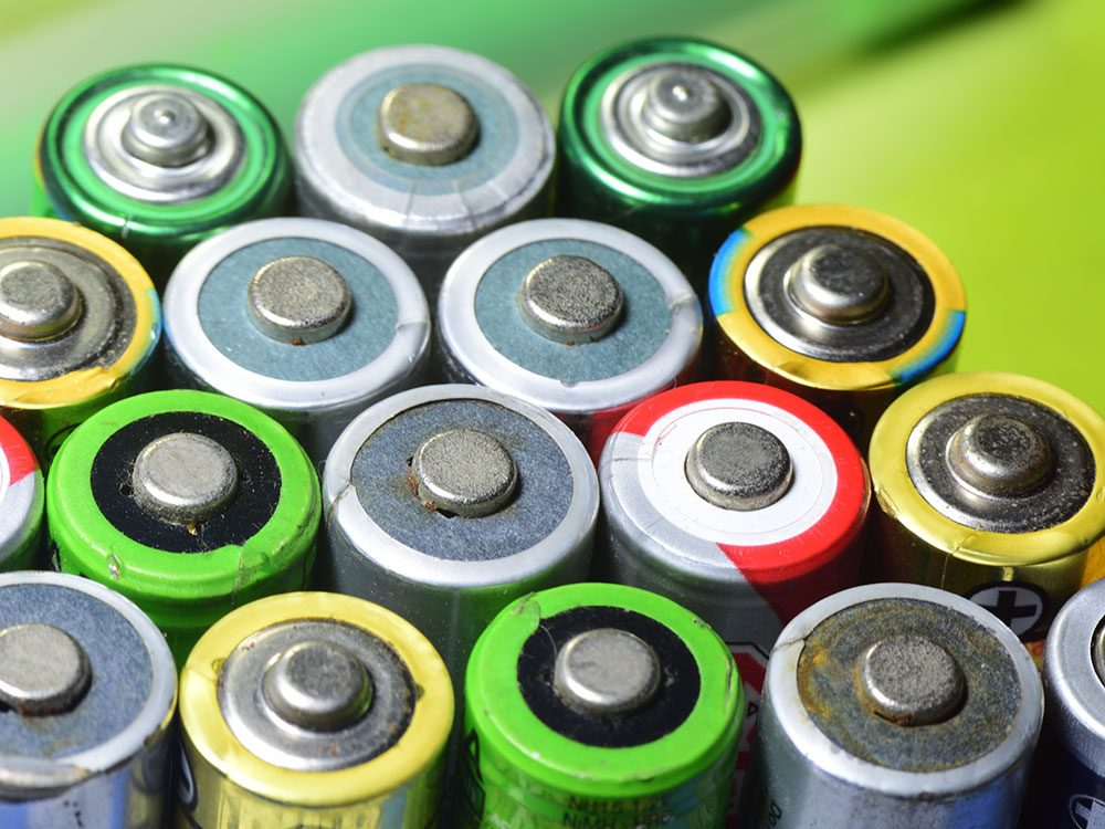 Health risks for pets - batteries and other small items