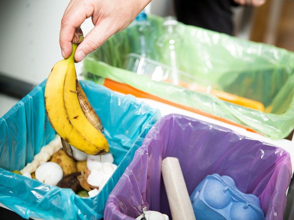 Health risks for pets - trash cans