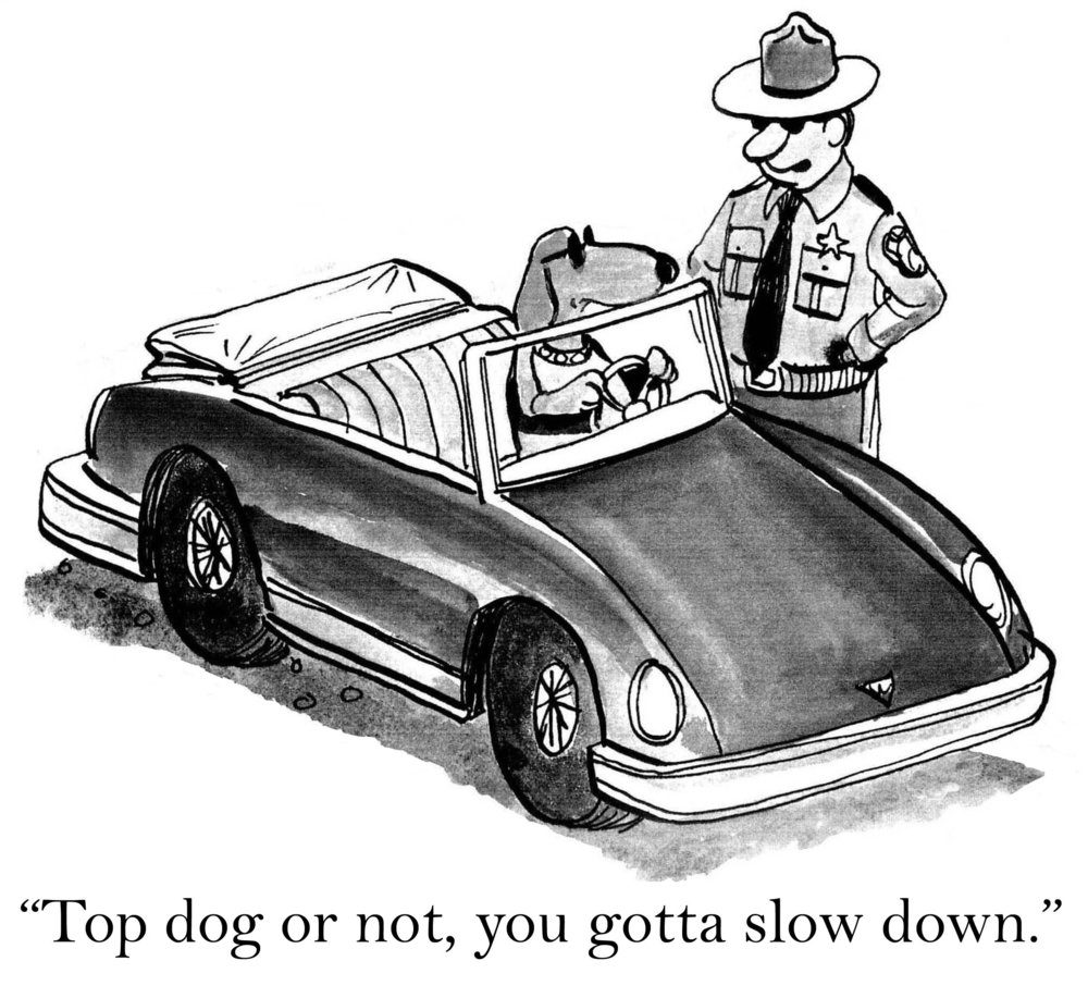 """Top dog or not, you gotta slow down."""