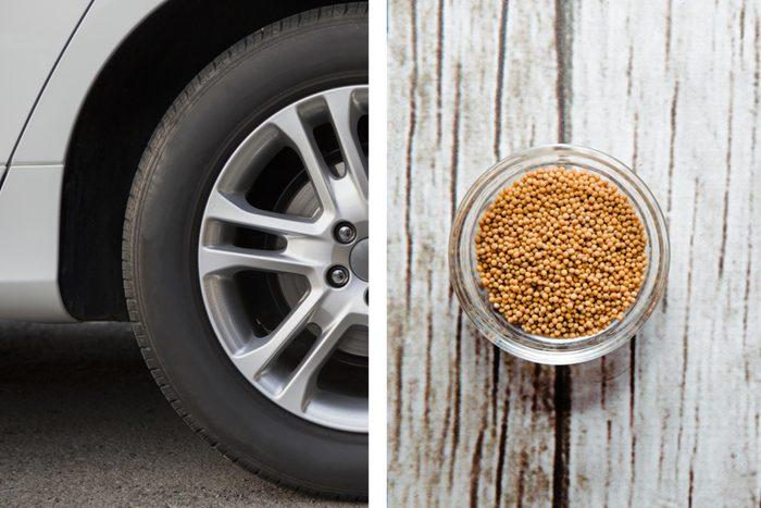 Get rid of odours - Skunky car smells pantry