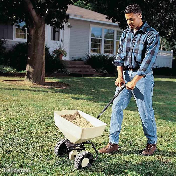 Man reseeding his lawn