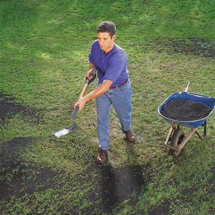 patchy lawn