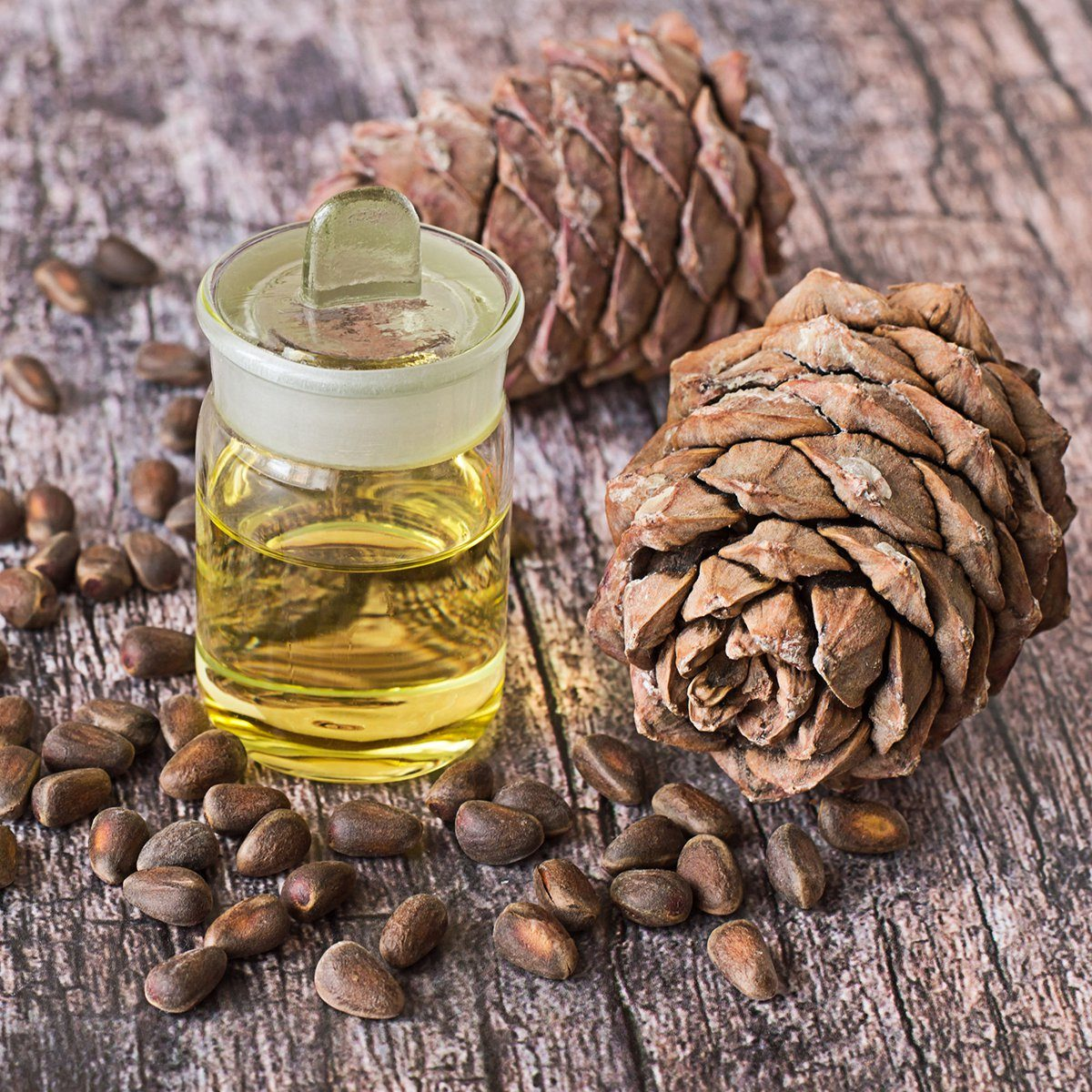 Cedar oil in a glass bottle and cedar cones with nuts on a old wooden table.