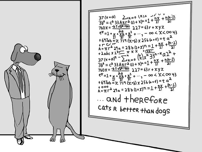 Funny dog cartoons - cats are better than dogs