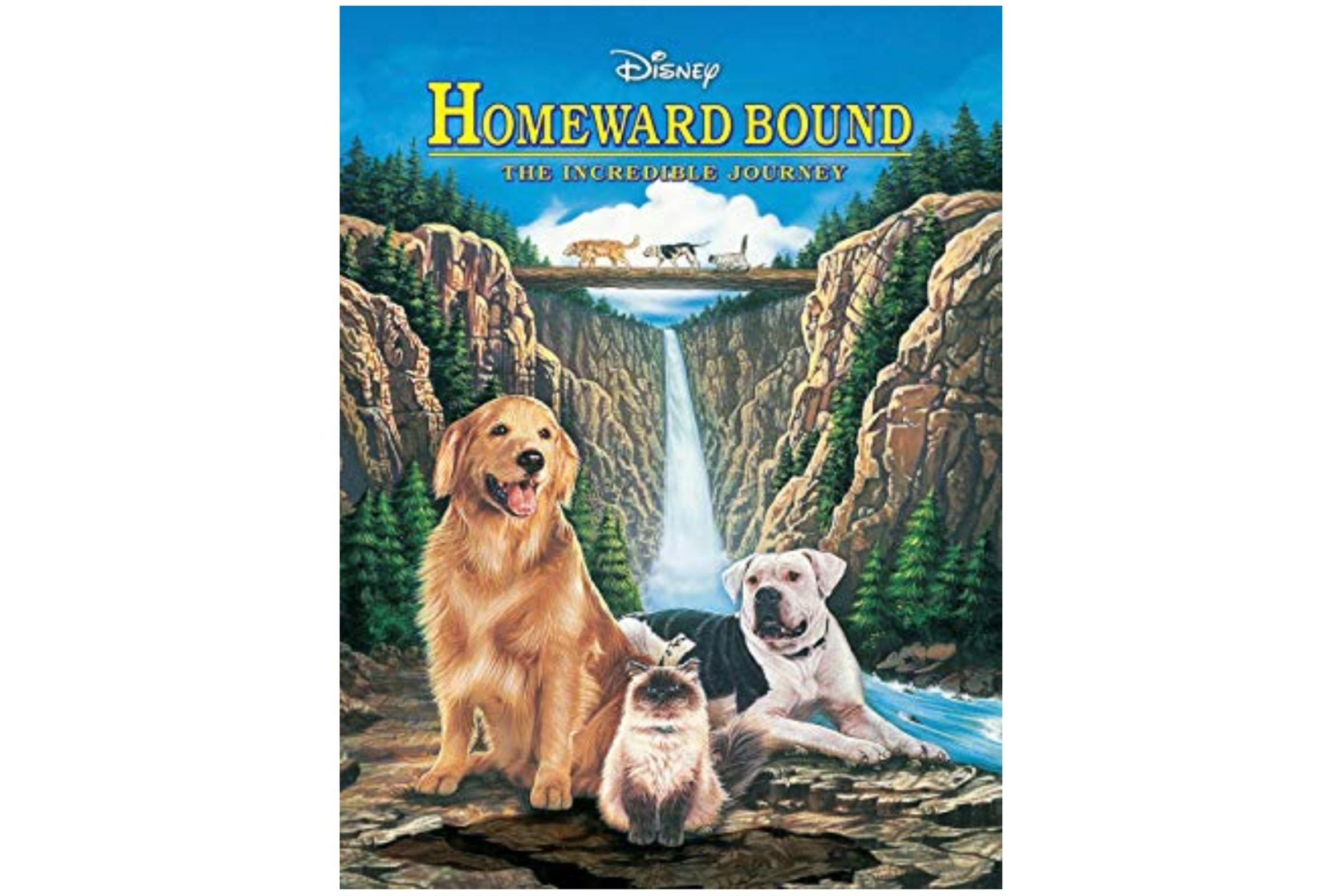 07_Homeward-Bound-The-Incregdible-Journey
