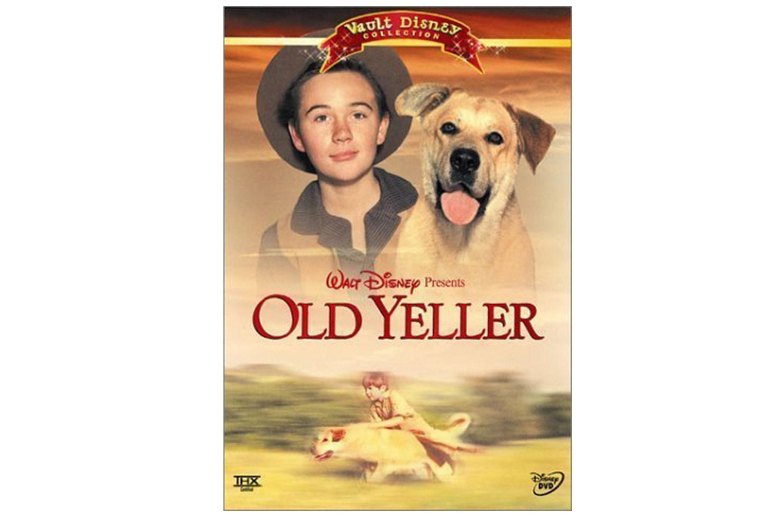 08_Old-Yeller