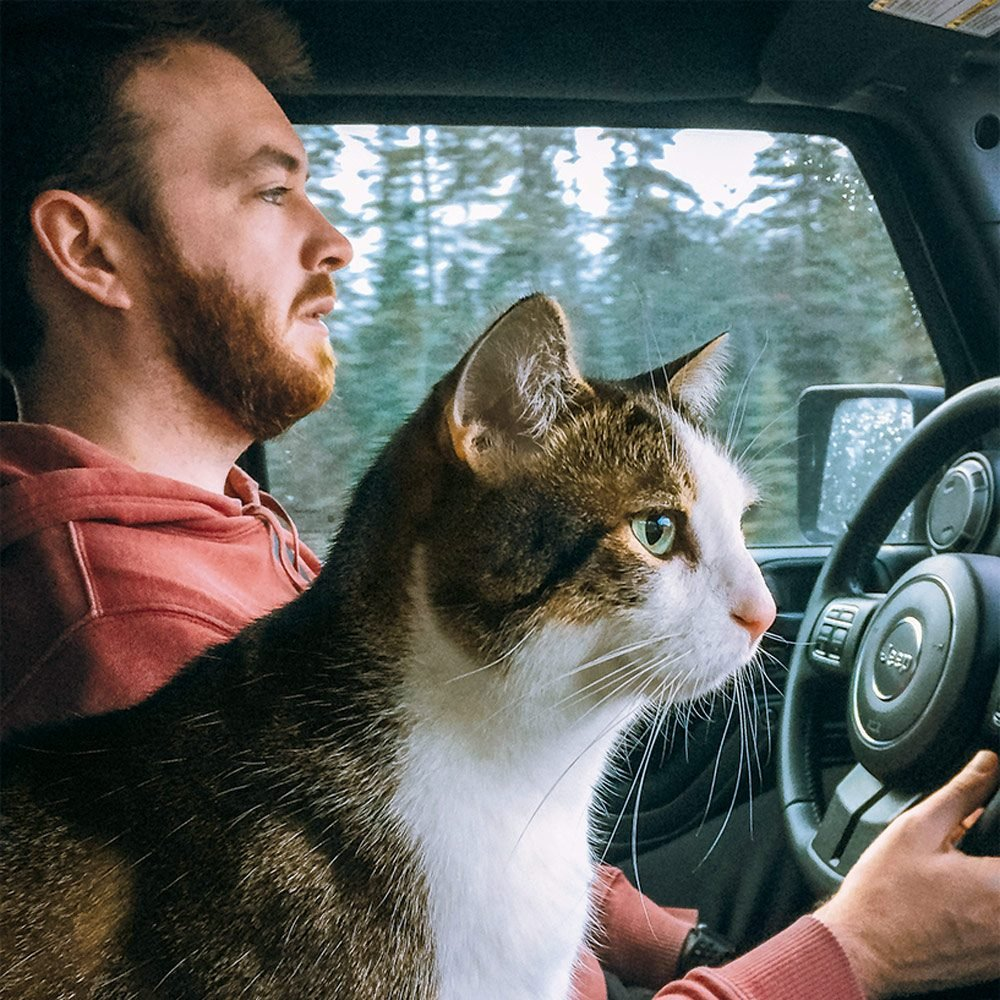 Gunner the cat keeps Nik company in the front seat