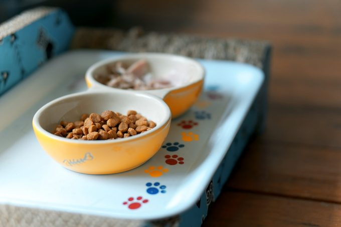 Two dishes of pet food on a white tray