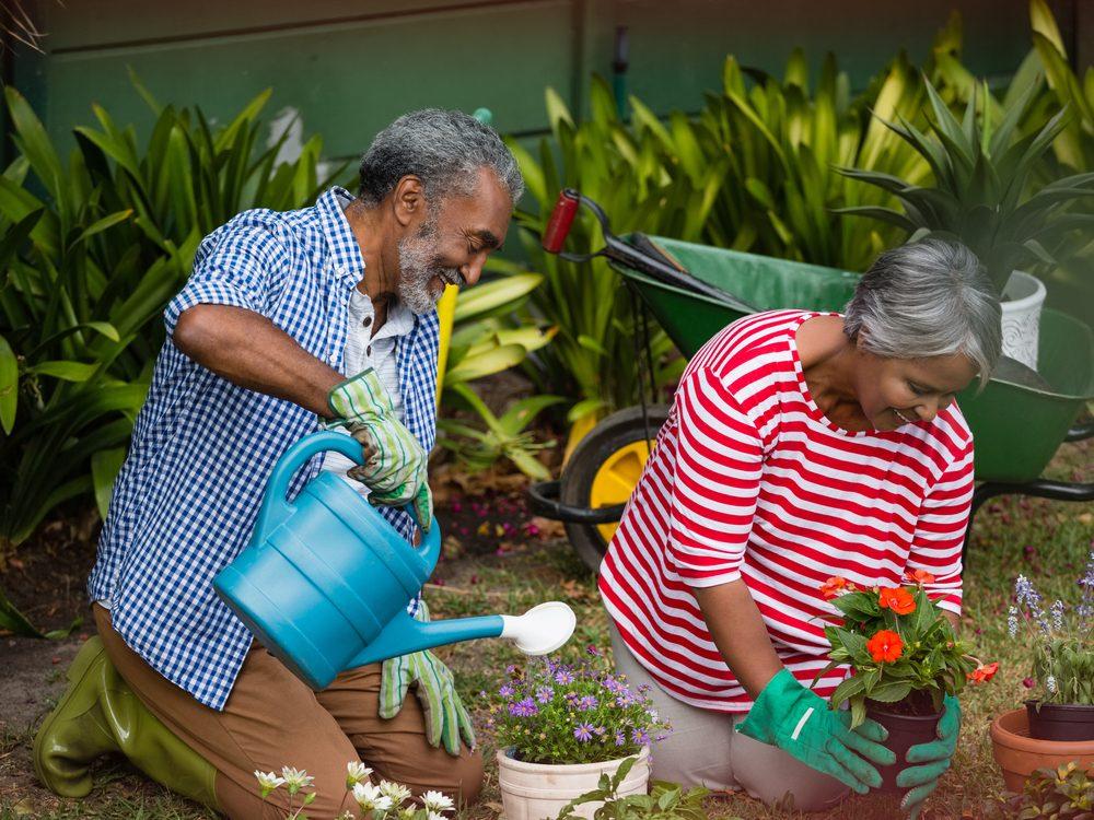 Senior citizens maintaining their backyard garden
