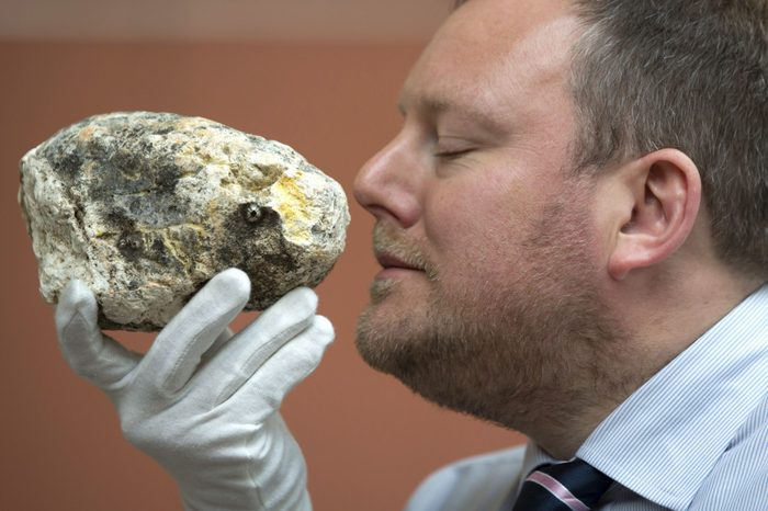 Whale ambergris photoshoot, Macclesfield, Britain - 10 Sep 2015