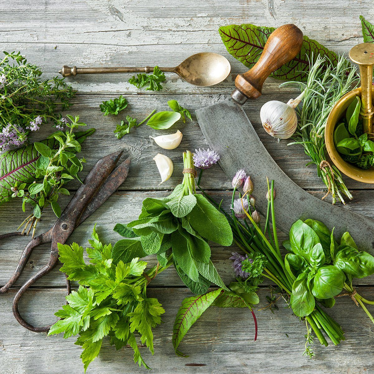 fresh kitchen herbs and spices on wooden table.