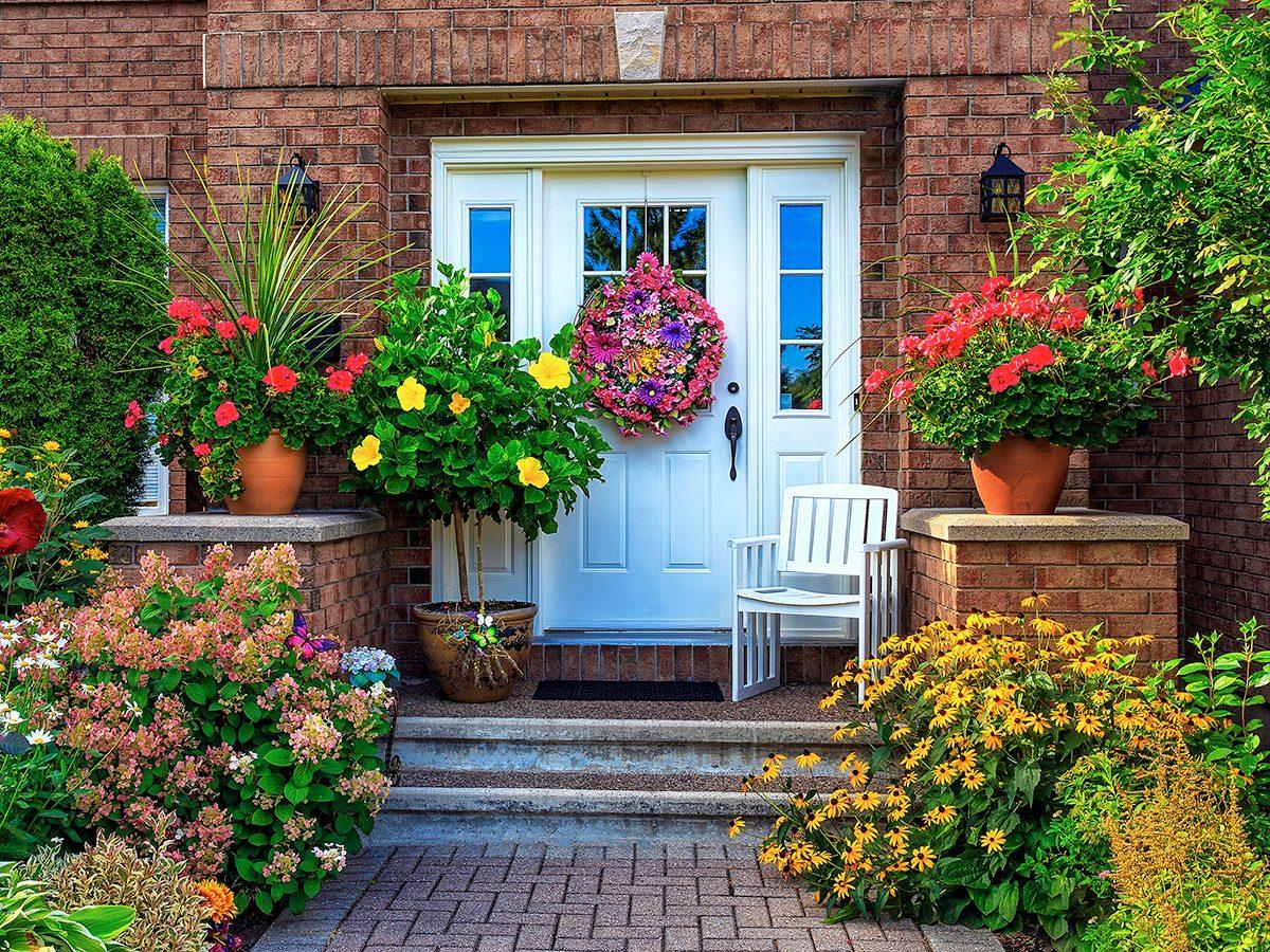 Garden photography - front door greenery