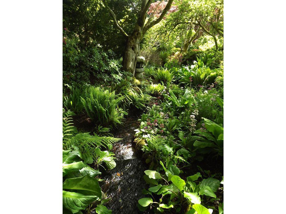 garden photography hatley castle
