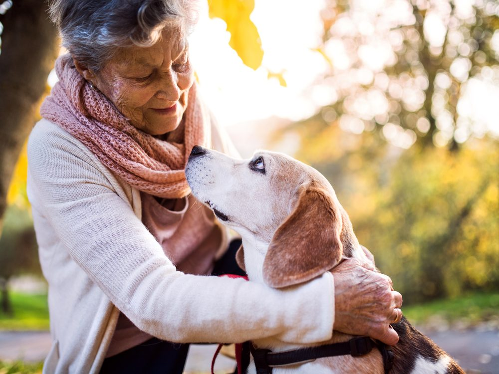 life after a stroke woman and dog