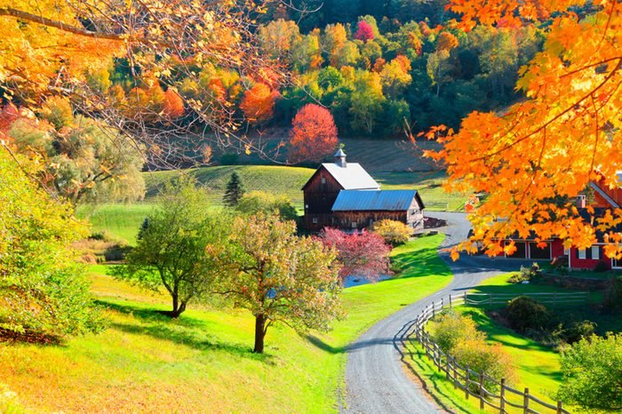 06-vermont-happiest-states-570367513-SNEHIT