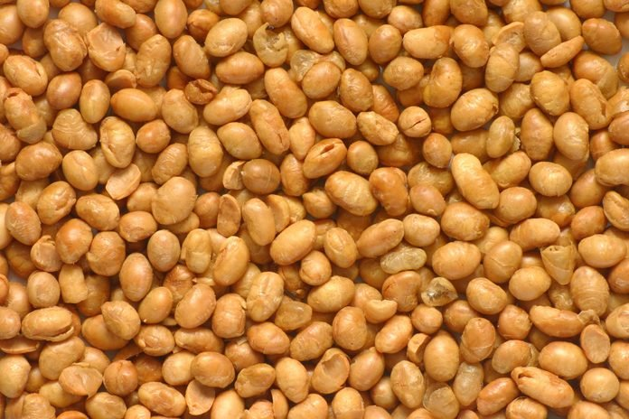 close-up of soy nuts