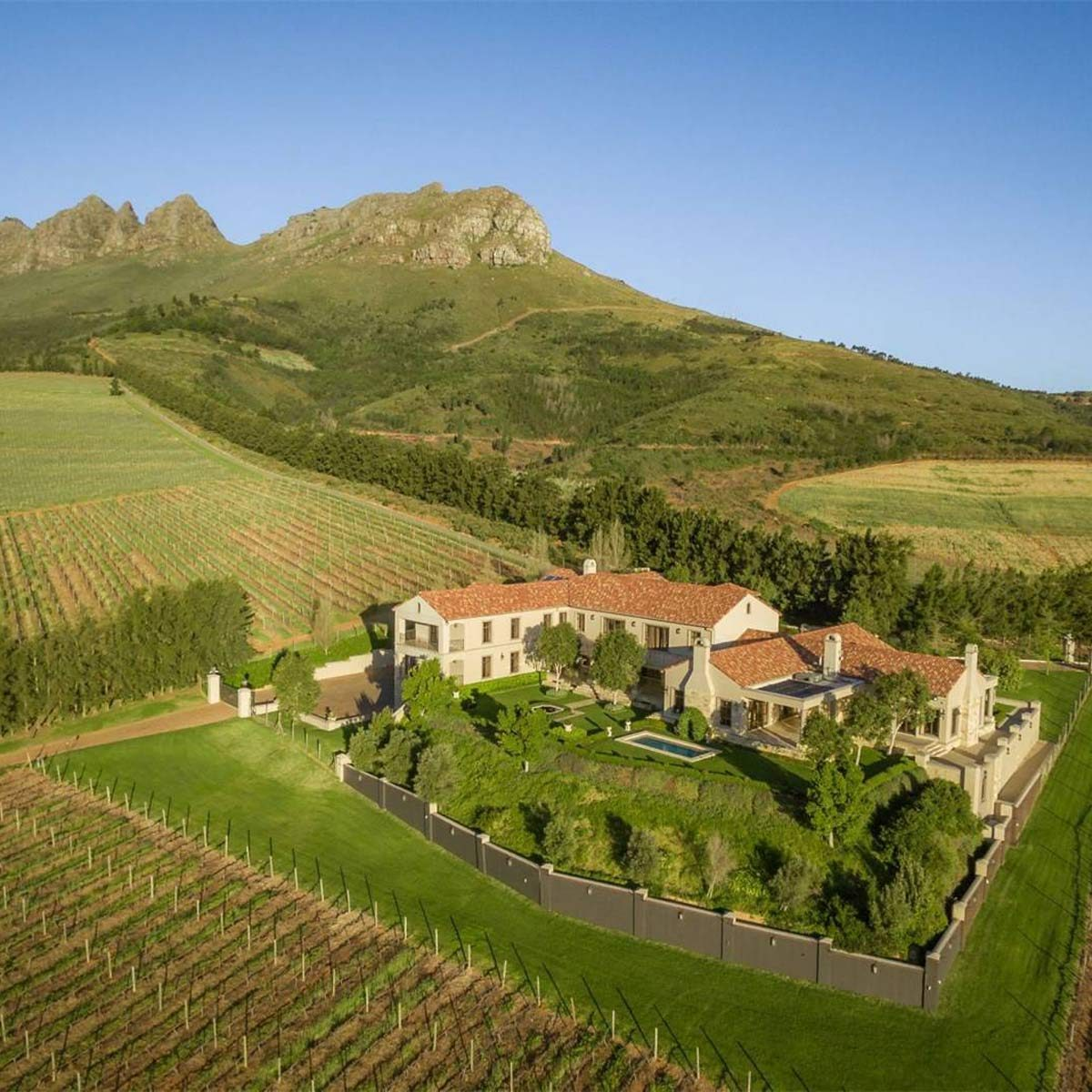 Mansion with a large vineyard near mountains in South Africa