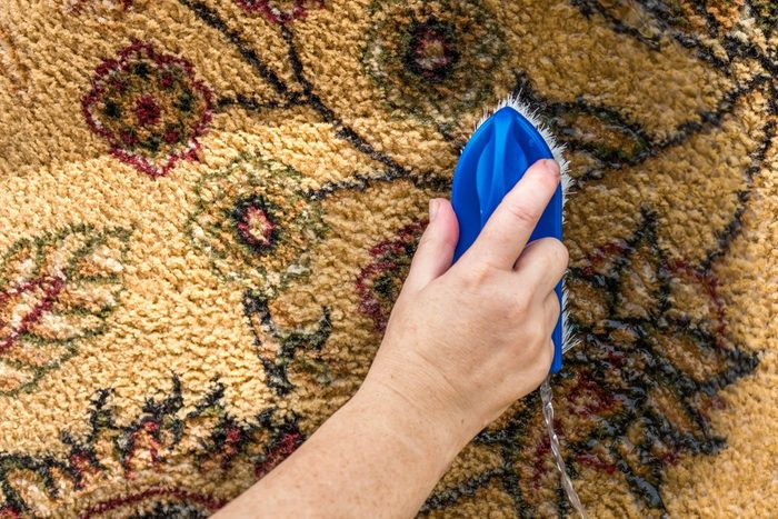 Cleaning the carpet close up. Women hand brushing the carpet. Copy space