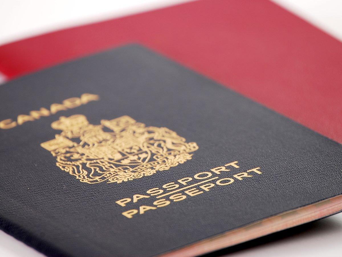 Everyday things made for WW1 - passport