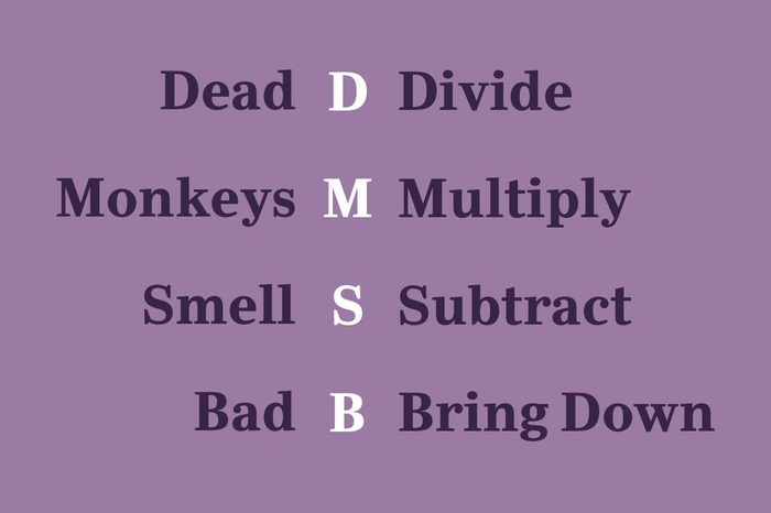 long division mnemonic device