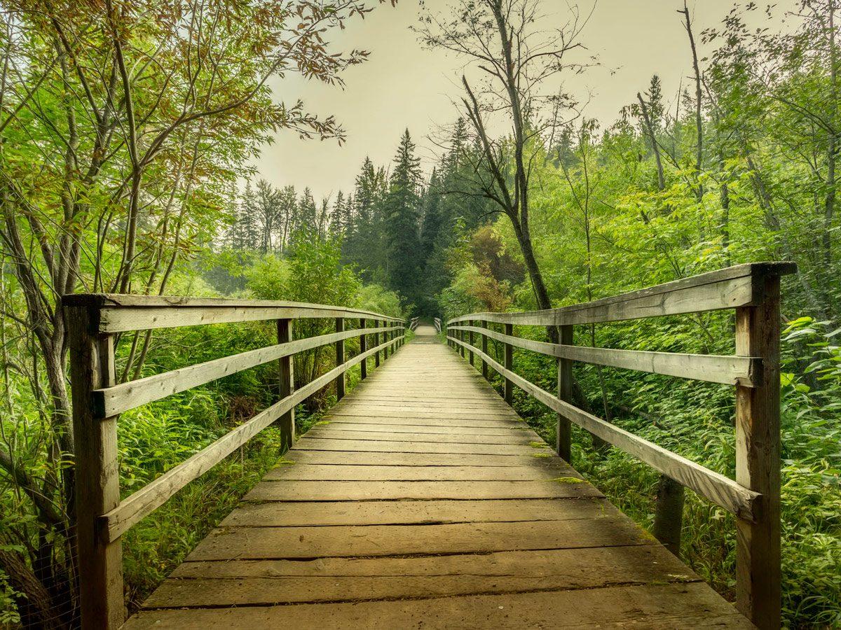 Path at Whitemud Park in Edmonton