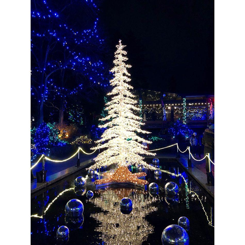Deck the halls - festive light display