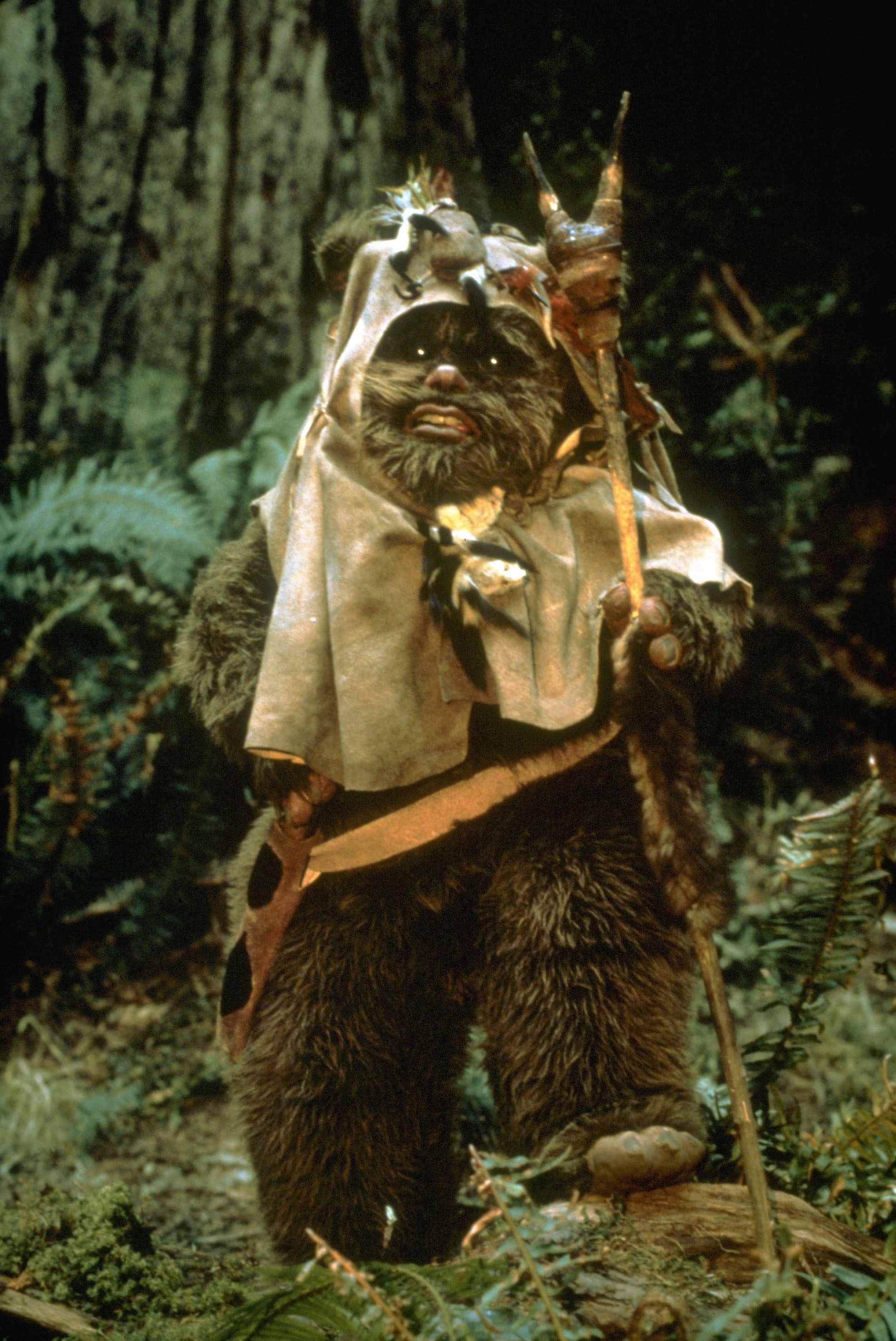 Kenny Baker as ewok - Star Wars Episode Vi - Return Of The Jedi - 1983