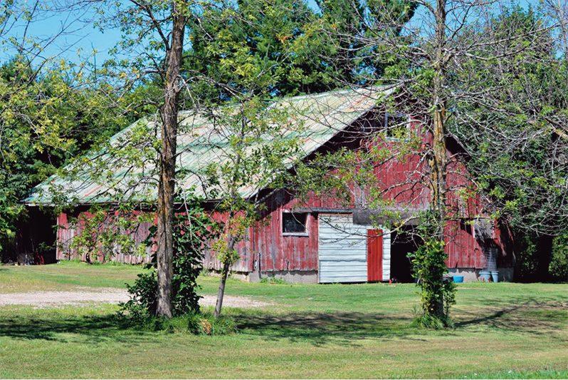 Abandoned barns photography - Elsinore Church Shed