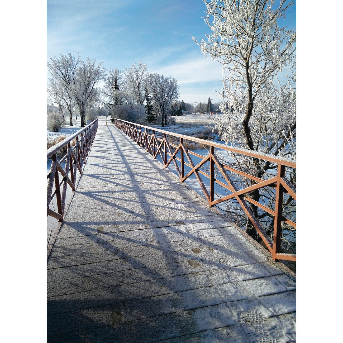 Beauty of the Canadian winter photography - bridge