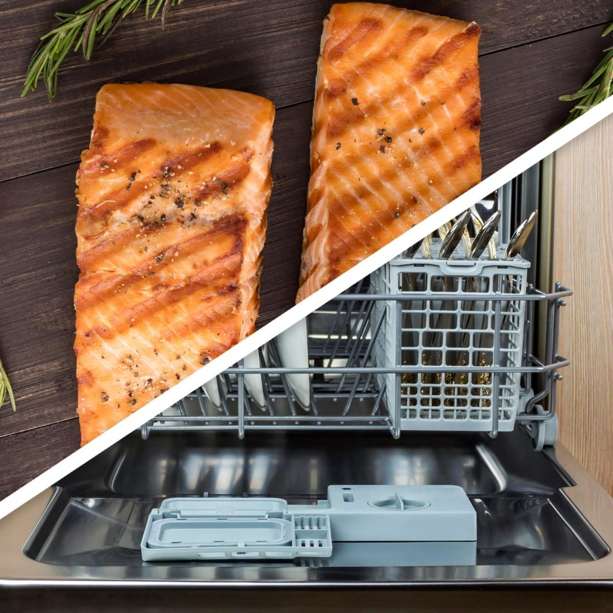 Salmon and dishwasher
