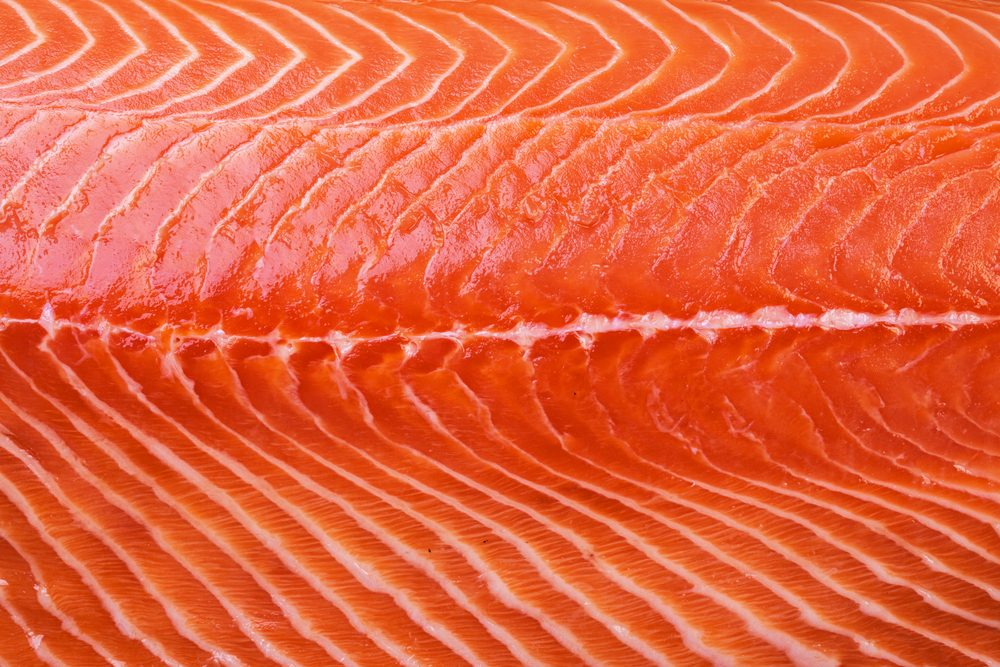 Texture of raw Norwegian salmon. Macro shooting