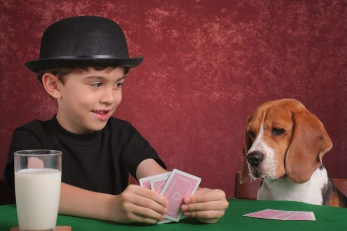 dog and boy playing cards