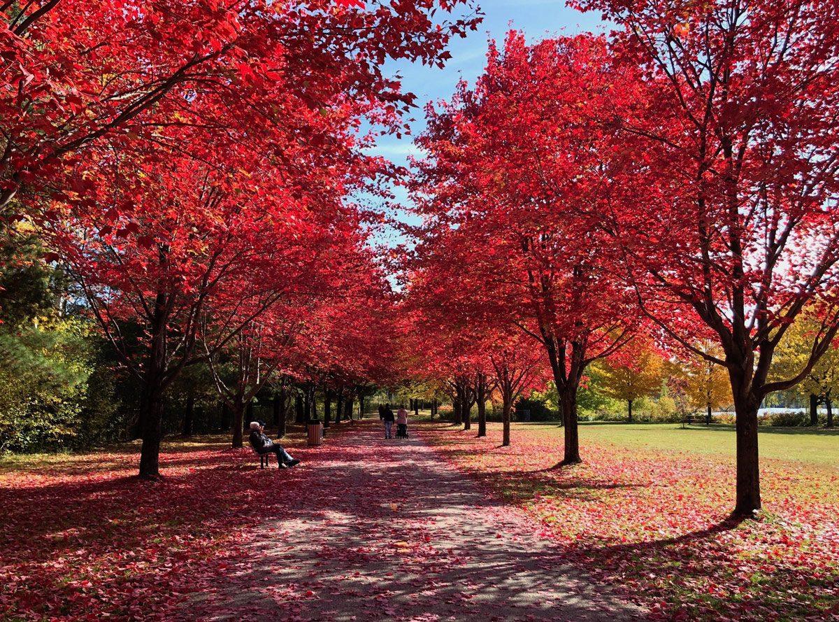 My hometown - Sherbrooke, Quebec