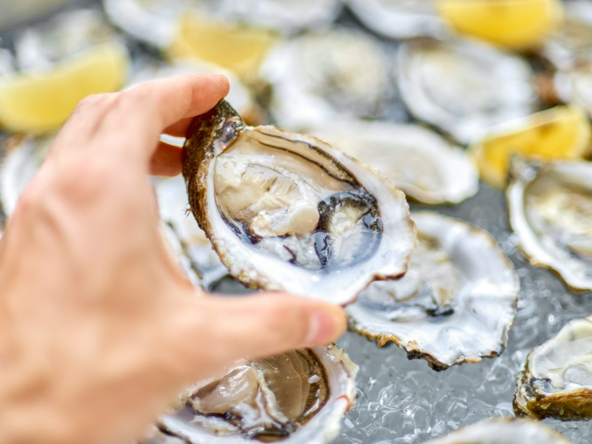 Platter of fresh oysters