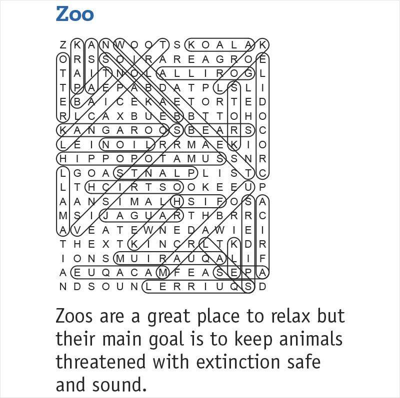zoo answers