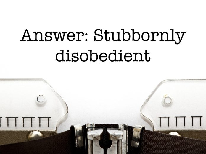 Answer: Stubbornly disobedient
