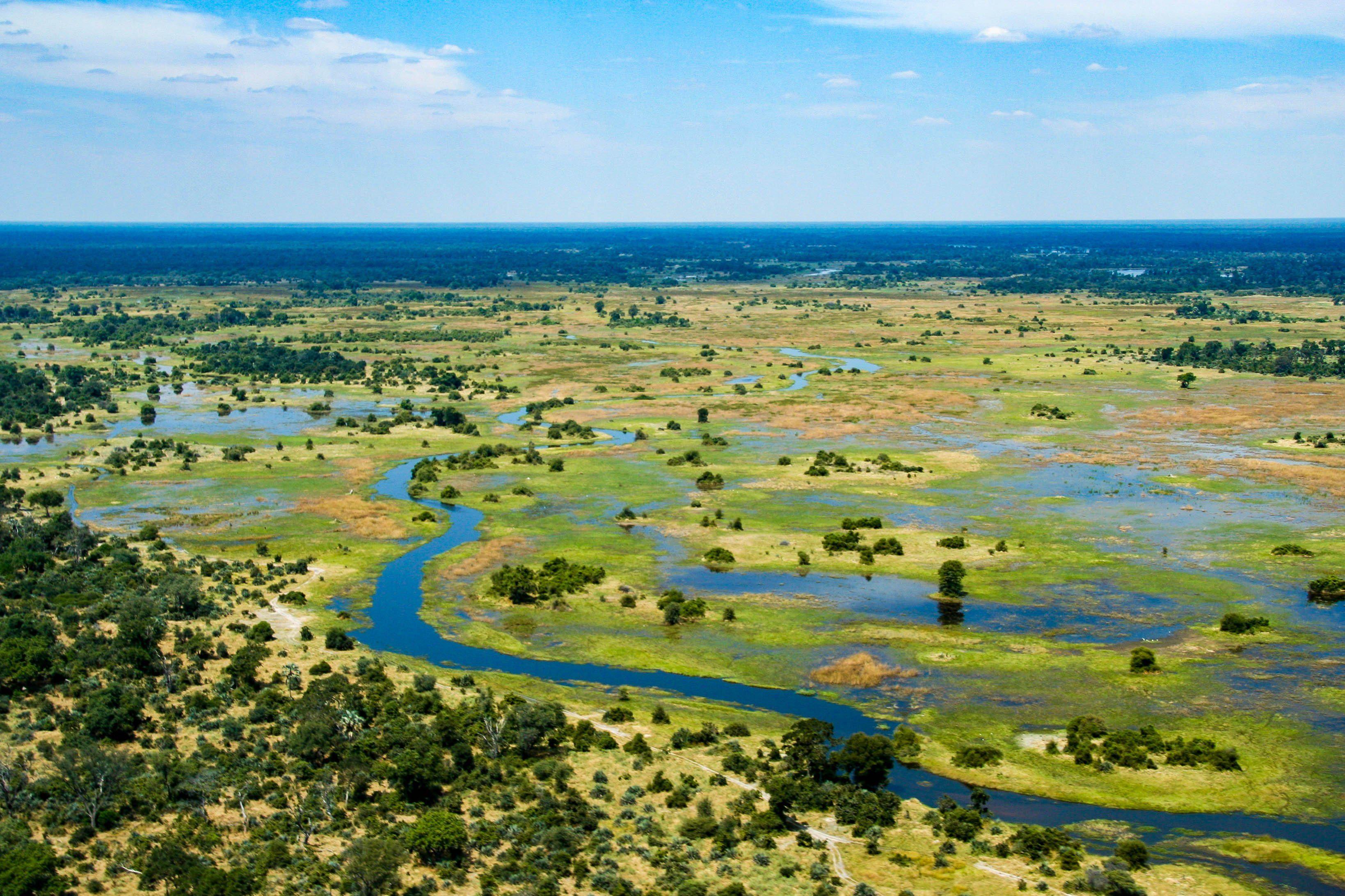 The Okavango Delta, Botswana