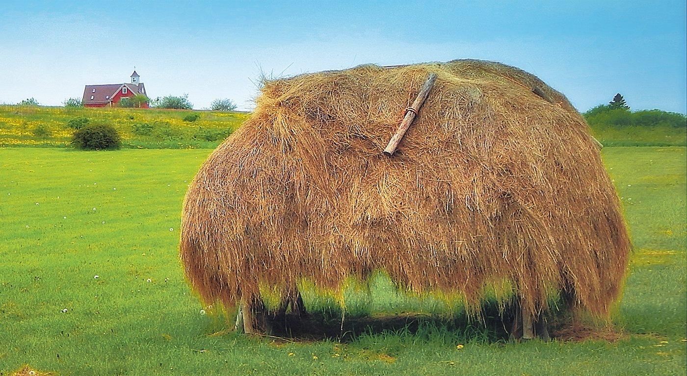 Haystack at Grand Pré National Historic Site