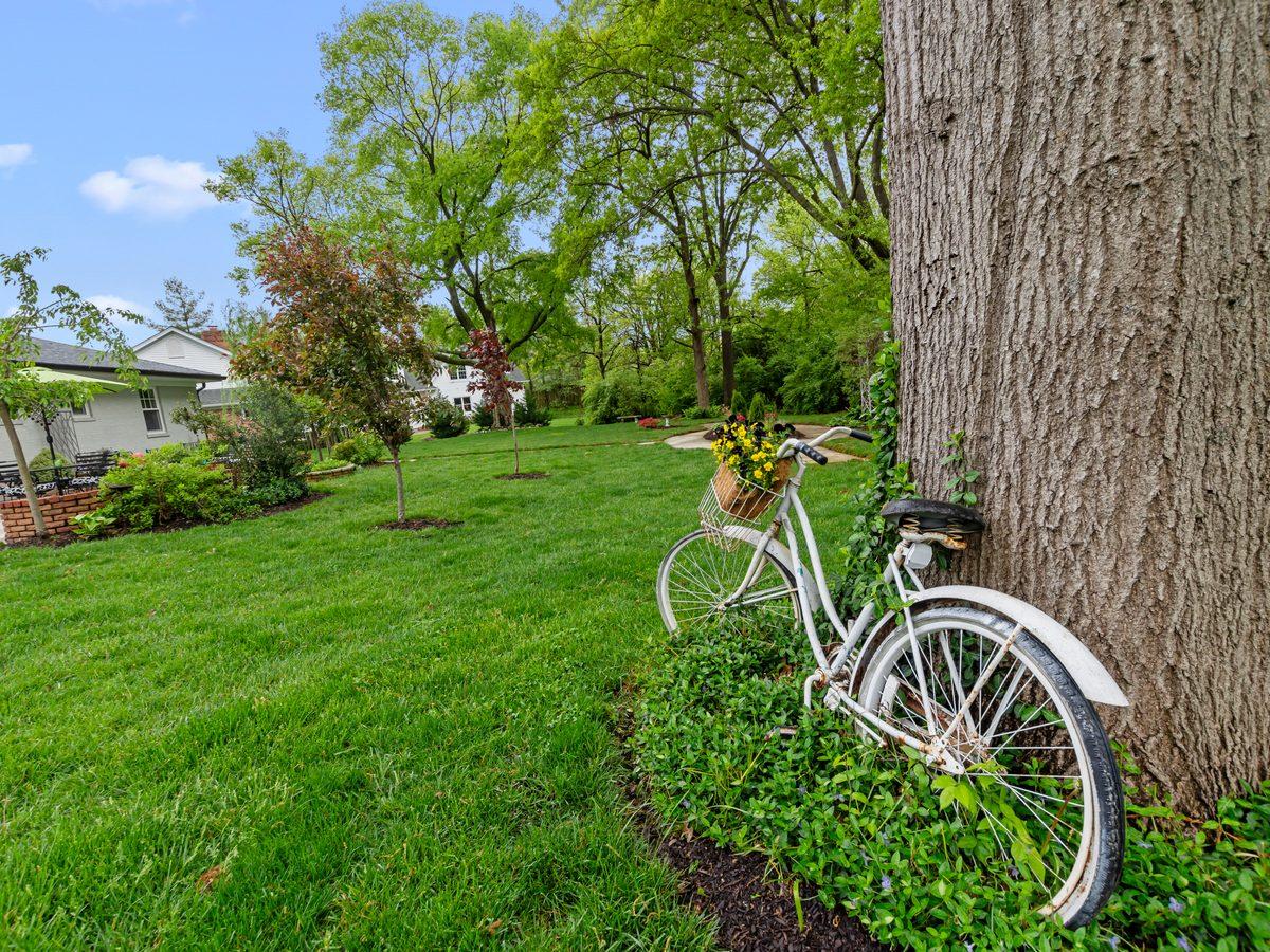 Bicycle in backyard