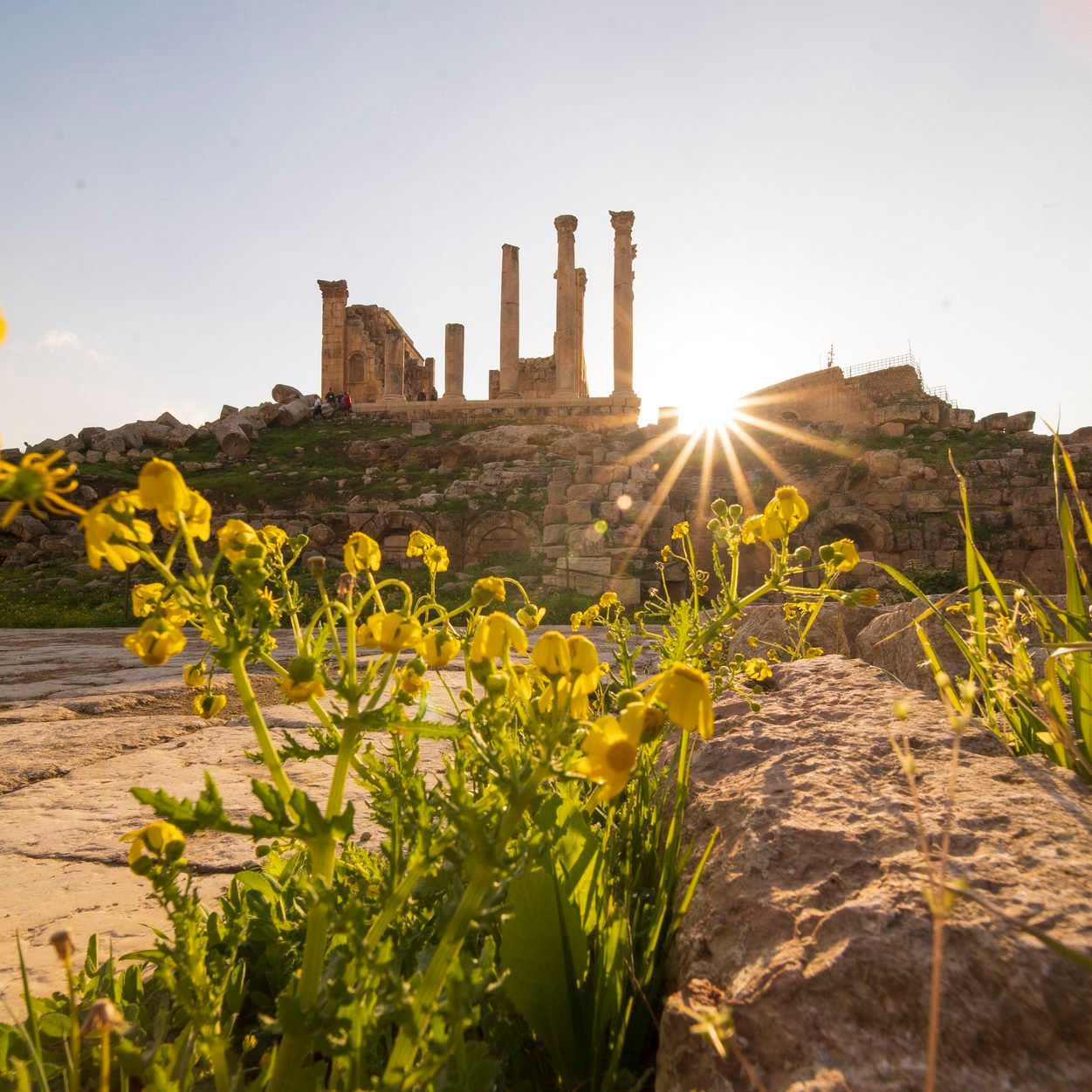 Panoramic view of Oval plaza with Ionic columns and Jerash city background, Jerash, Jordan