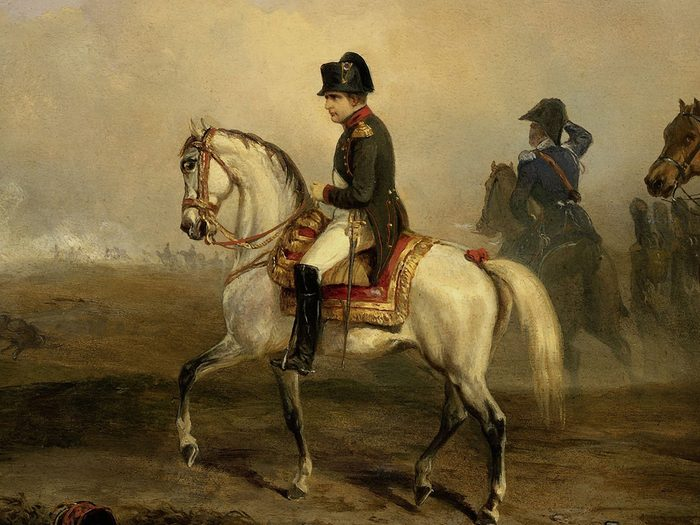 History questions - Napoleon Bonaparte painting