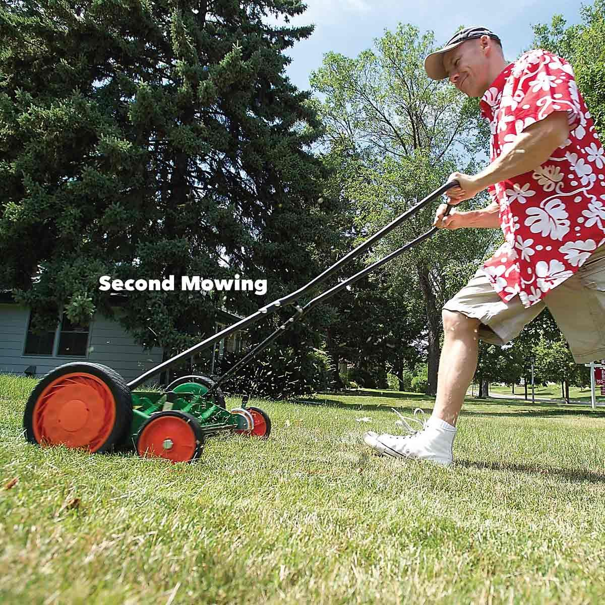 Man doing lawn maintenance