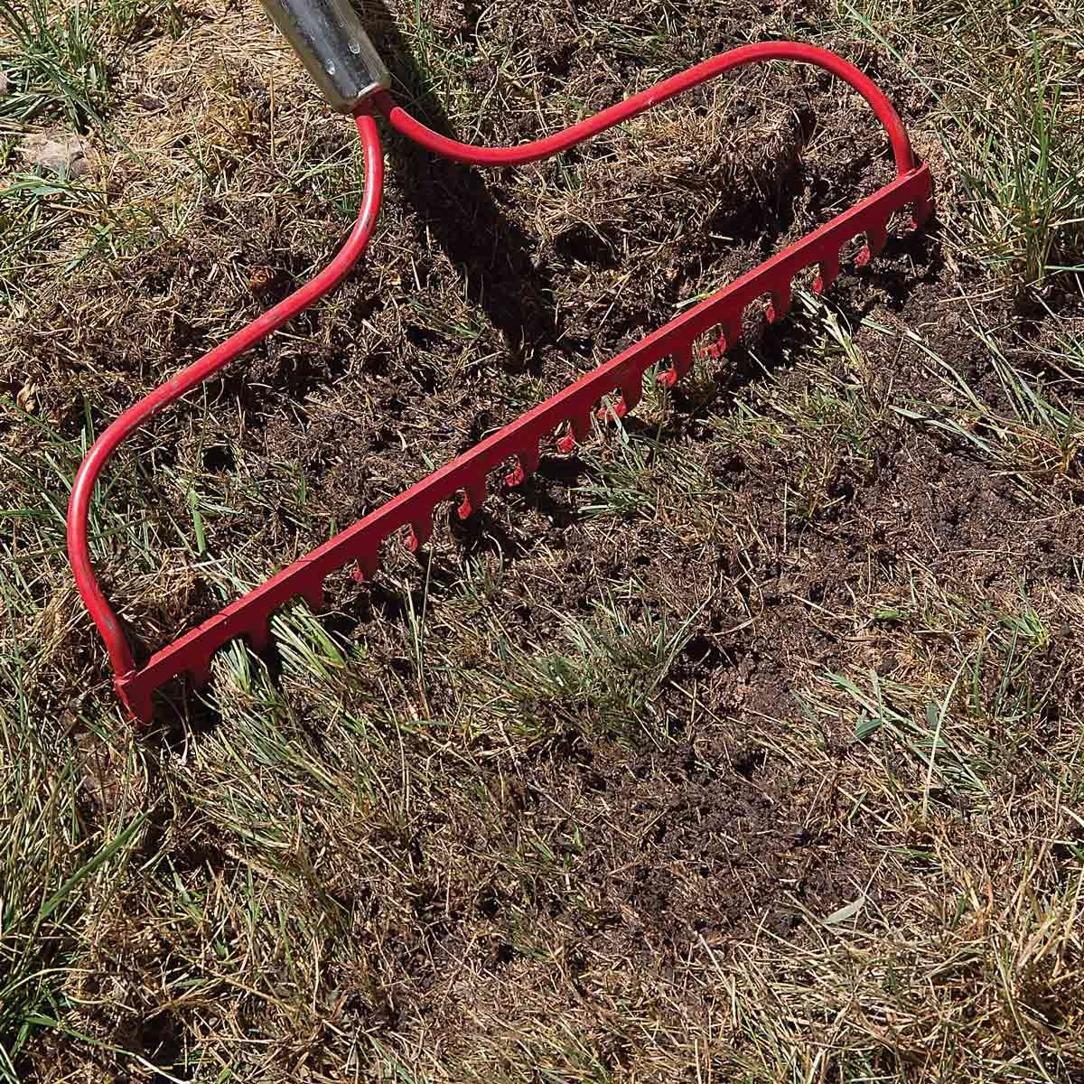 Bare soil
