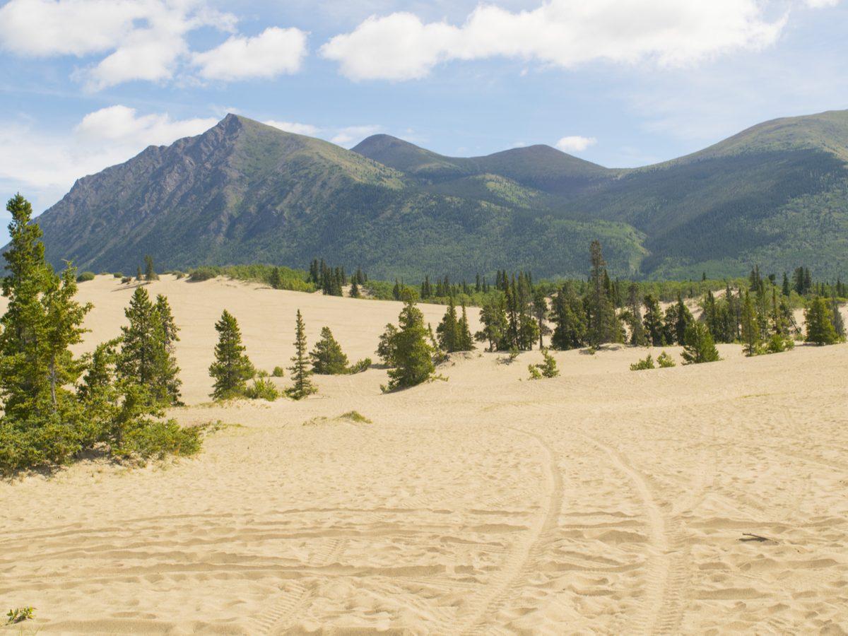 Canadian geography - Carcross Desert, Yukon