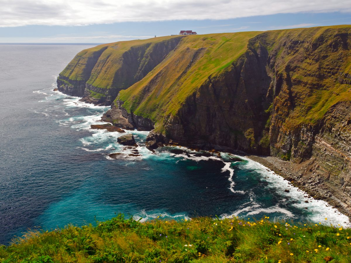 Canadian geography - Cape St. Mary, Newfoundland