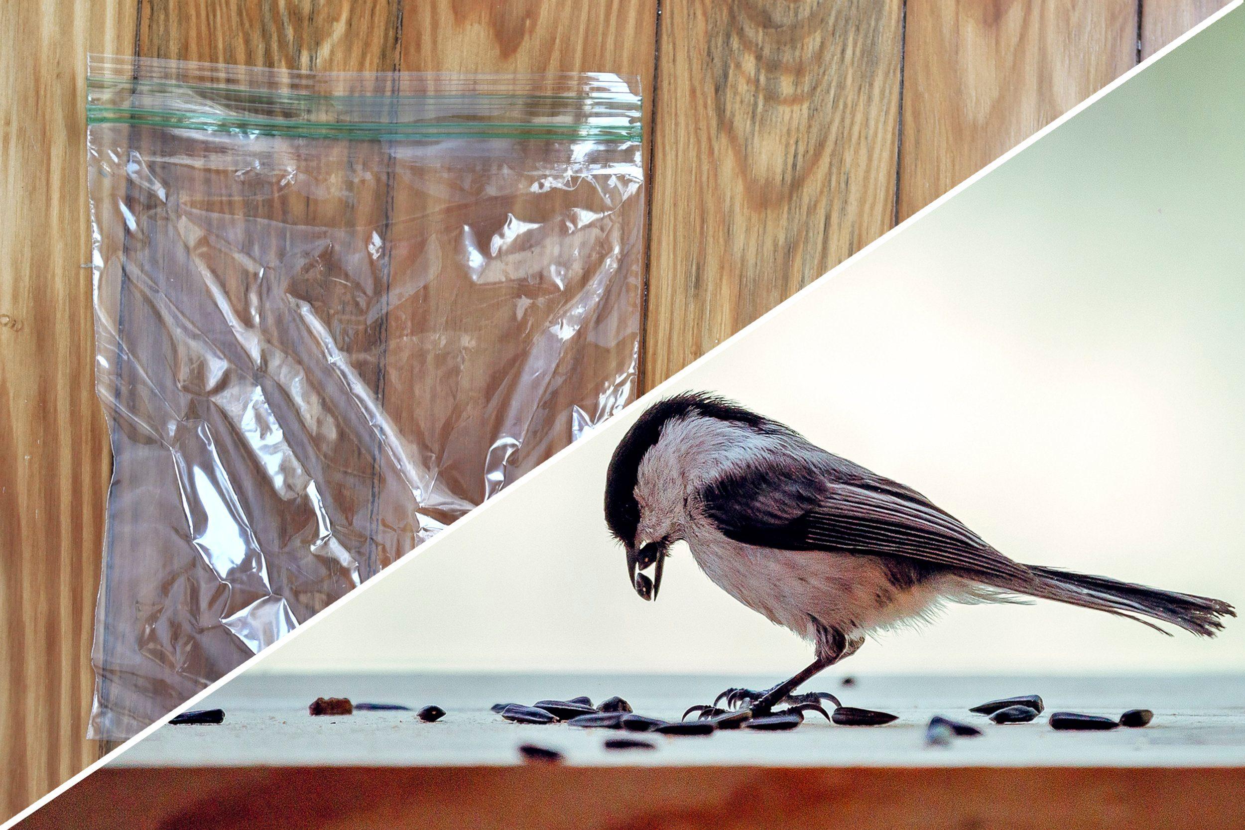 bird seed plastic bag uses