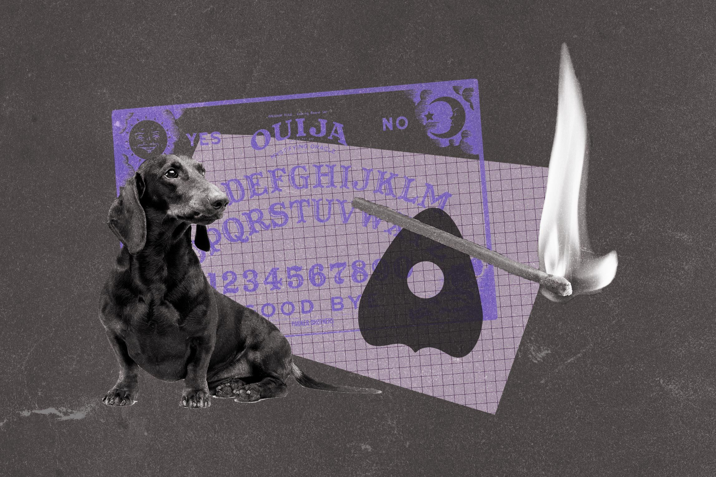 Collage of dog, ouija board, and fire